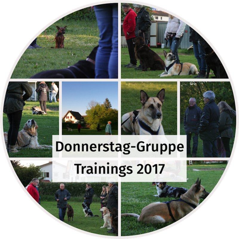 fotoalbum Donnerstag Gruppe 2017.jpg